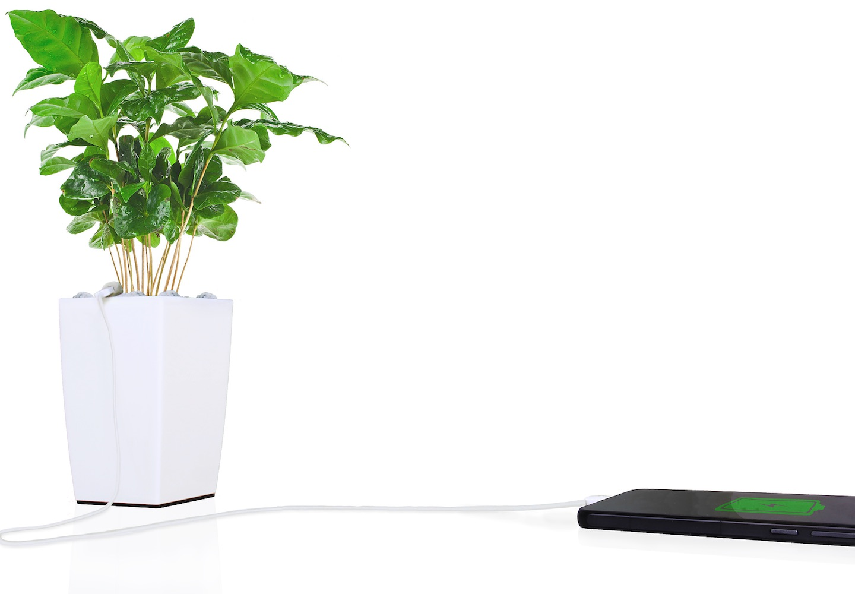 Bioo Lite Plant Pot Charger