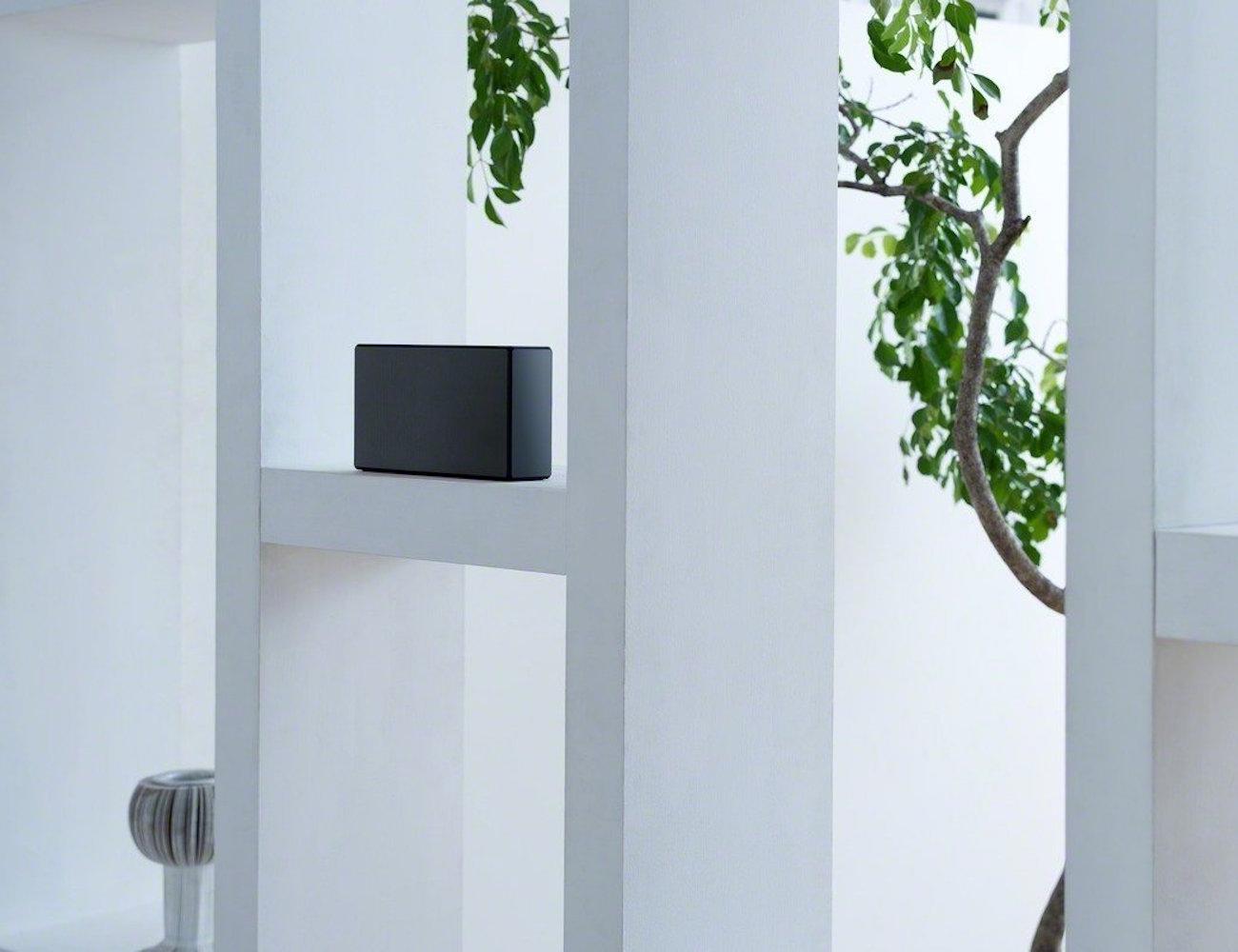 Sony SRSX55 Portable Bluetooth Speaker