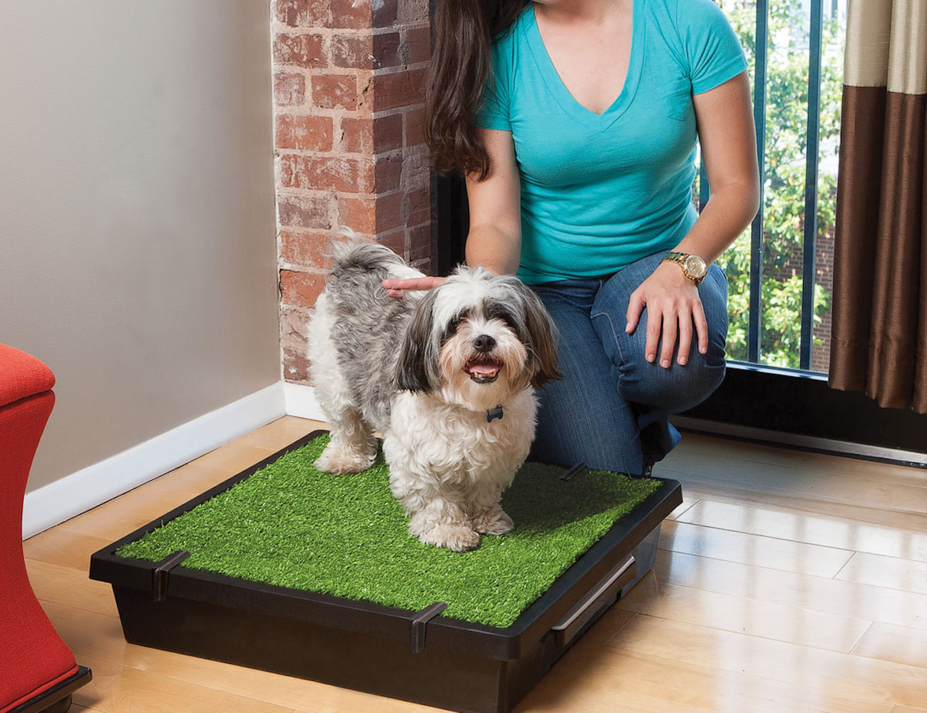 PetSafe+Portable+Pet+Potty