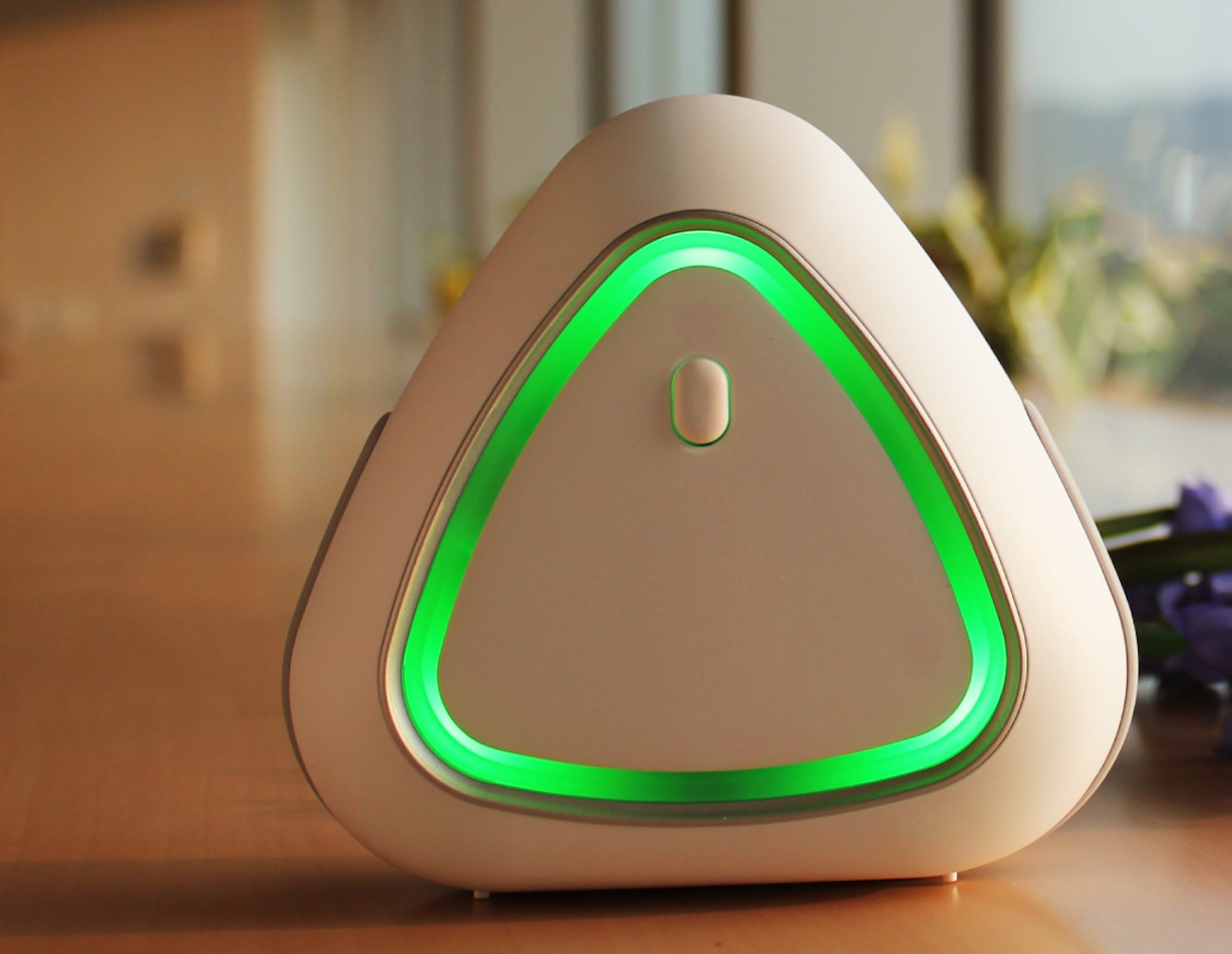 Air Mentor PRO 6-in-1 Indoor Air Quality Monitor