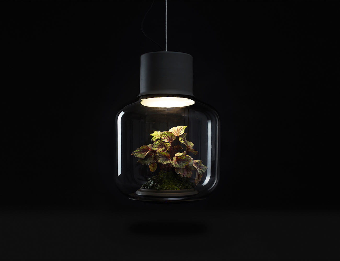 Lamp Mygdal by Nui Studio