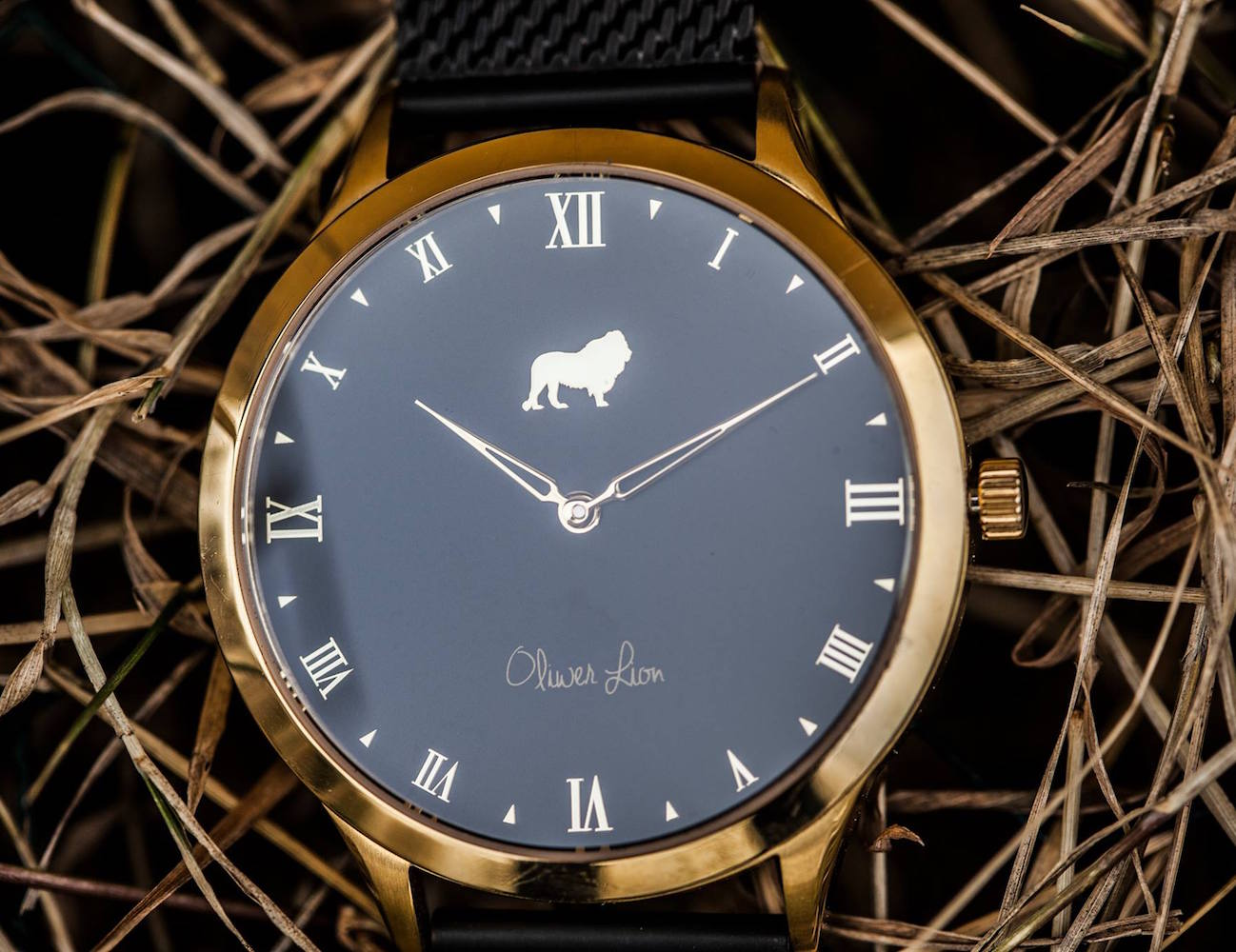 Oliwer Lion – Timeless Design and a Good Cause