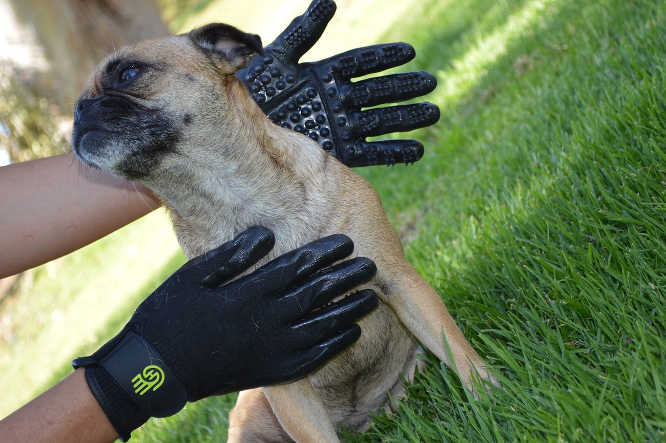 HandsOn+Gloves+%26%238211%3B+Bathing+Or+Grooming+Solution+For+Your+Pets
