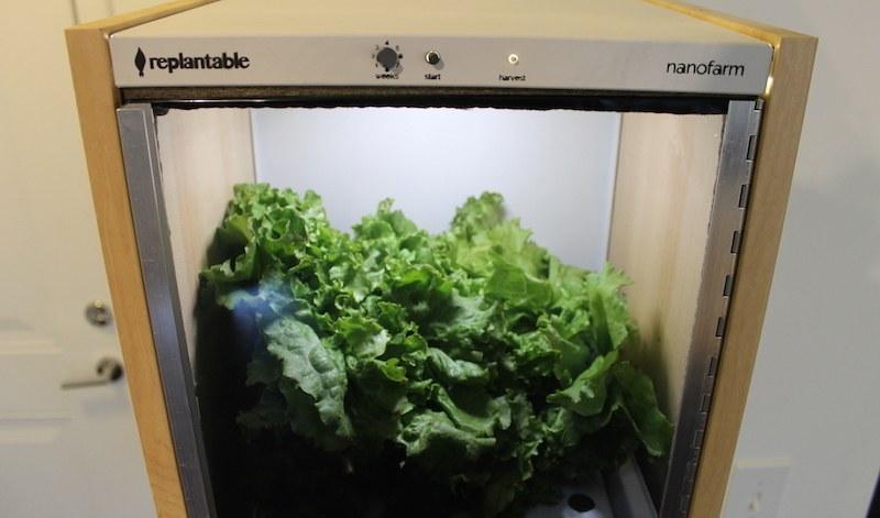 The Robotic Nanofarm Grows Delicious Greens in Your Kitchen