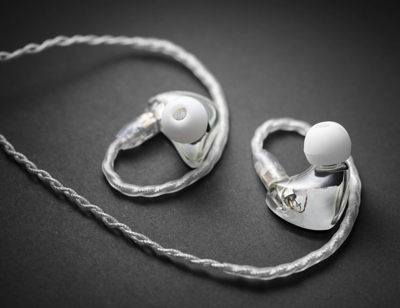RiotHz – Handcrafted Custom Hi-Fi Earbuds for Everyone
