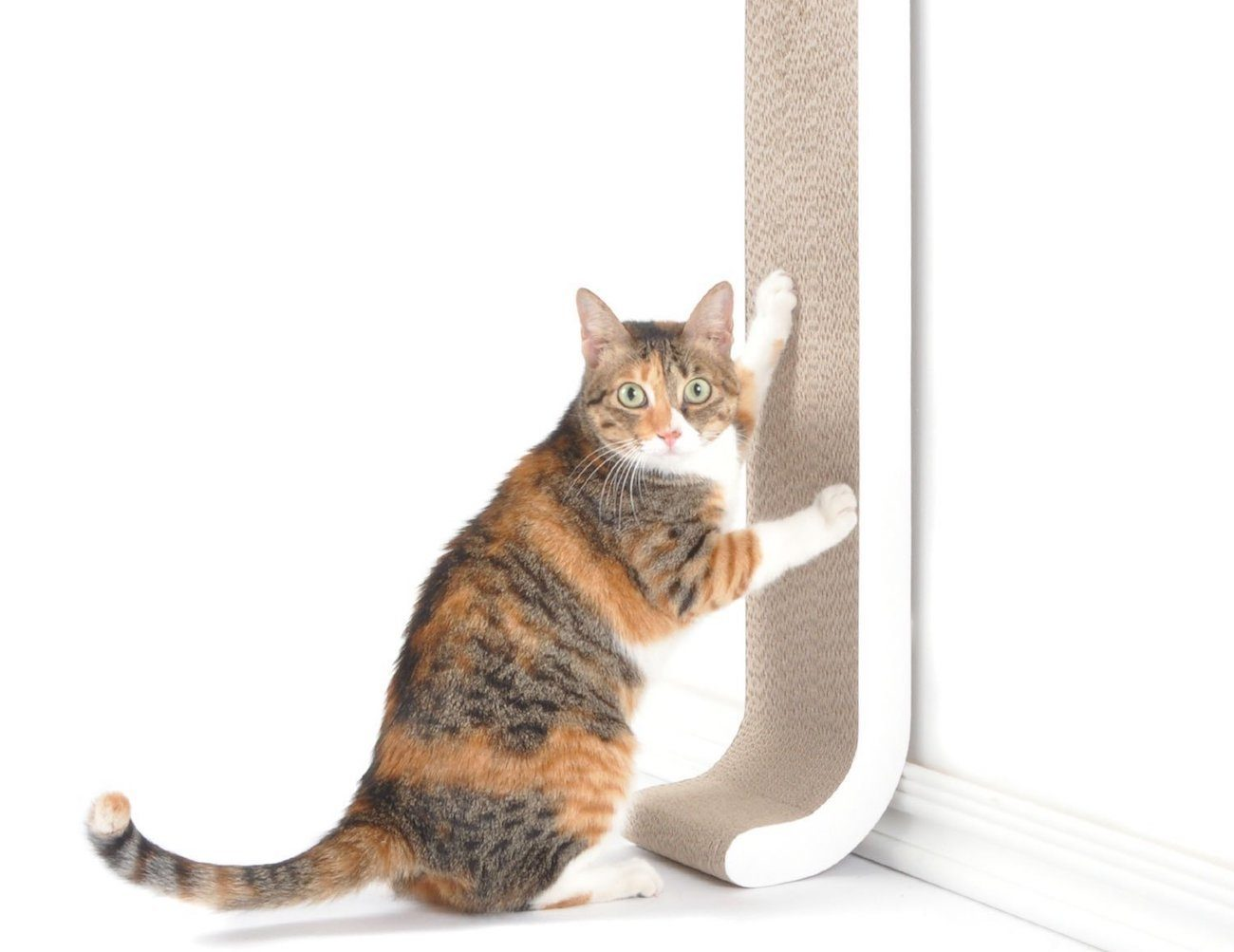 4CLAWS Wall Mount Cat Scratching Post