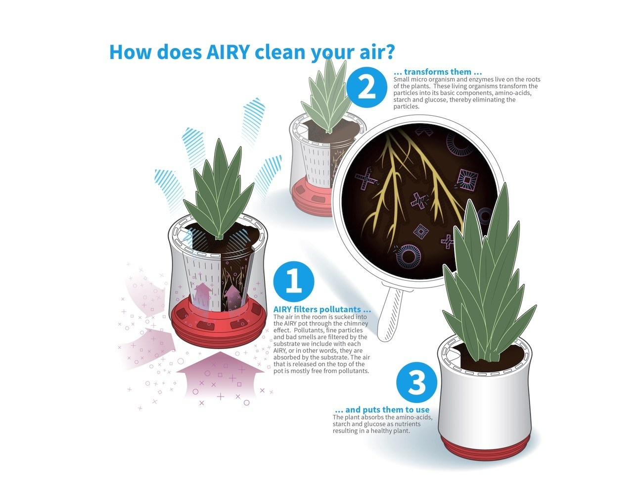 AIRY Box – Your Natural And Highly Effective Air Purifier
