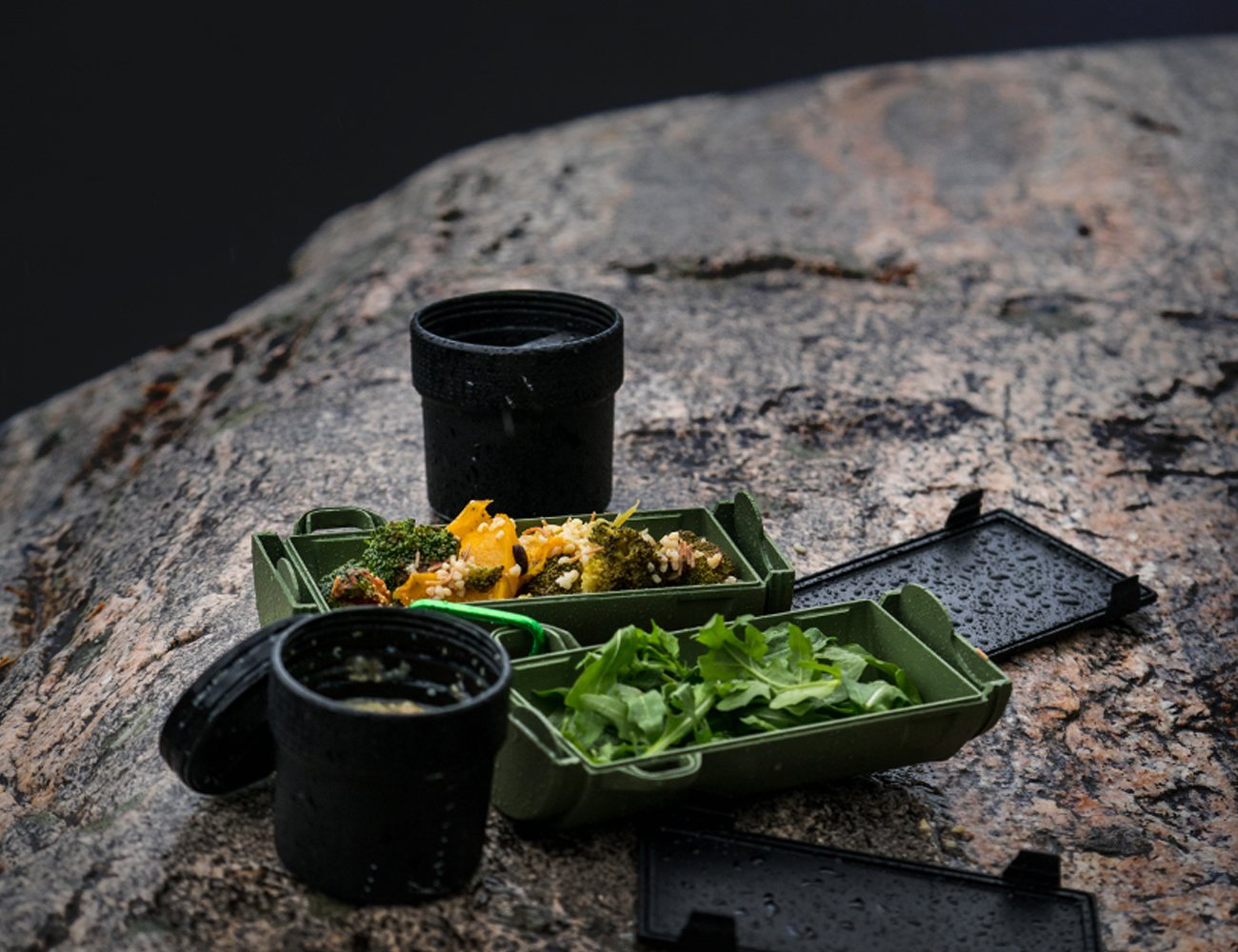 GreenTraveler – World's Best Travel-Friendly Food Container