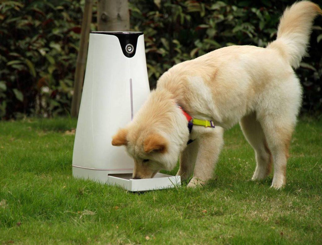 Hoison pet feeder