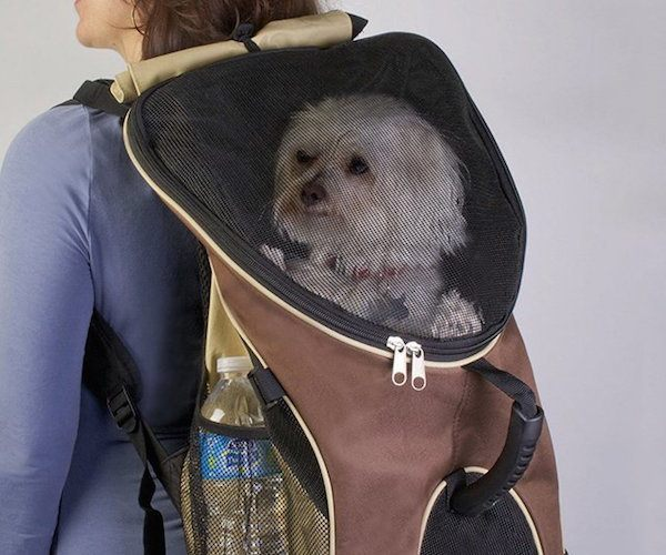 pet-zone-backpack-pet-carrier-01