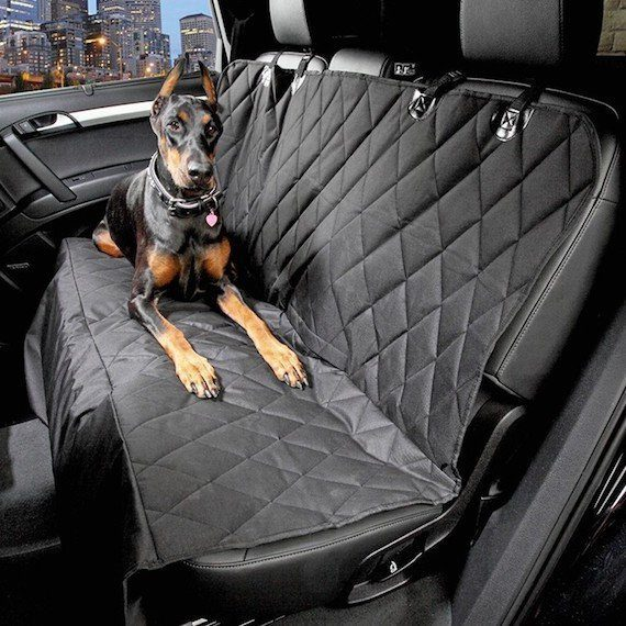 car-dog-seat-cover