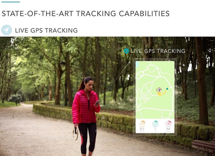 Findster Duo – The 1st GPS Pet Tracker Free of Monthly Fees!