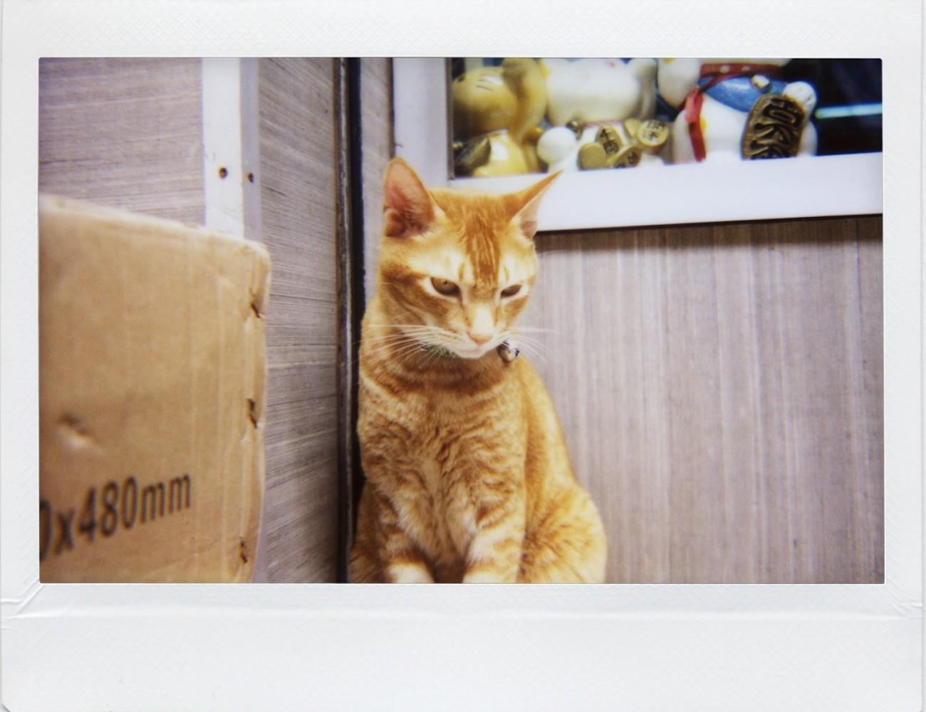 Lomo'Instant Wide Instant Camera