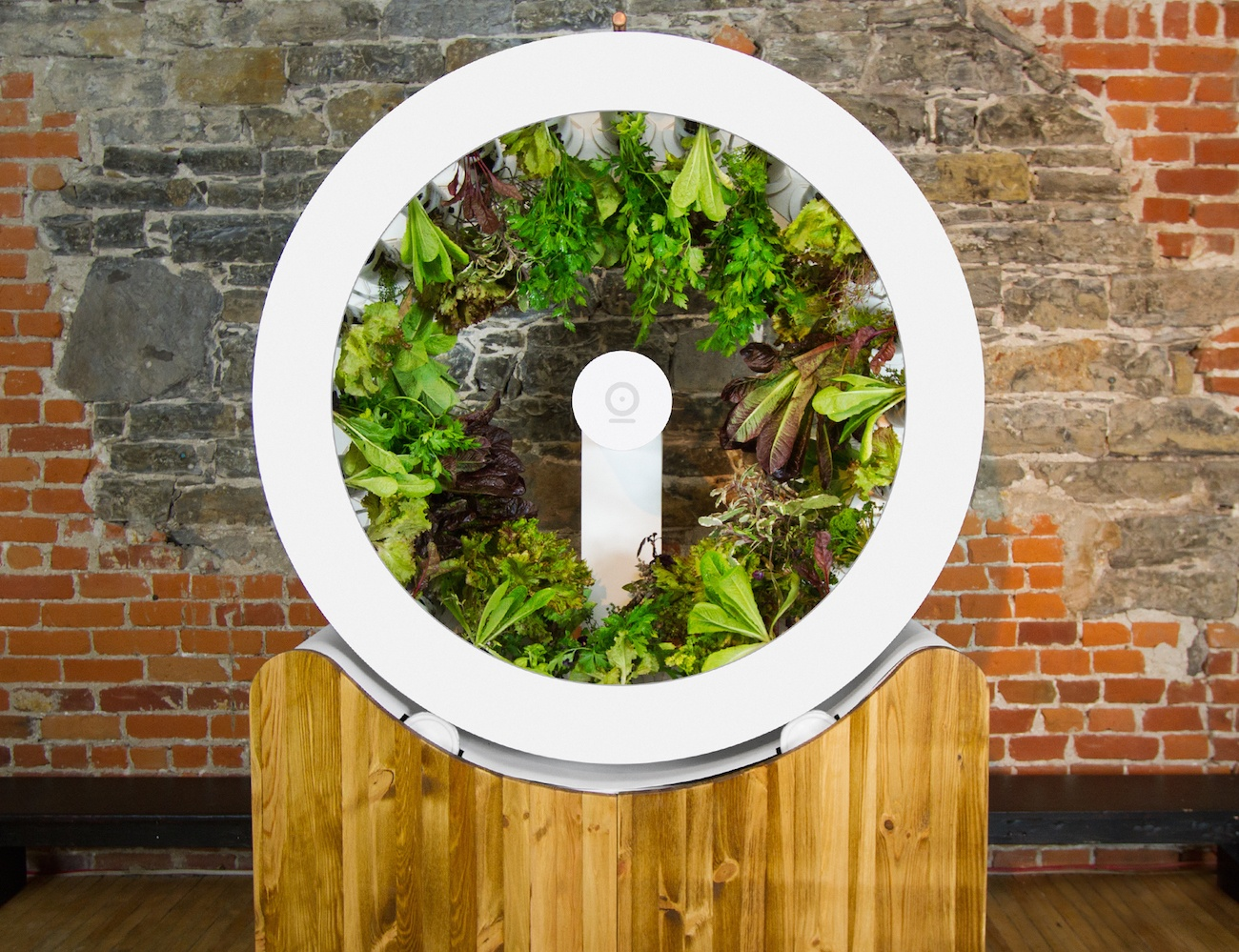OGarden – Automatic Indoor Garden