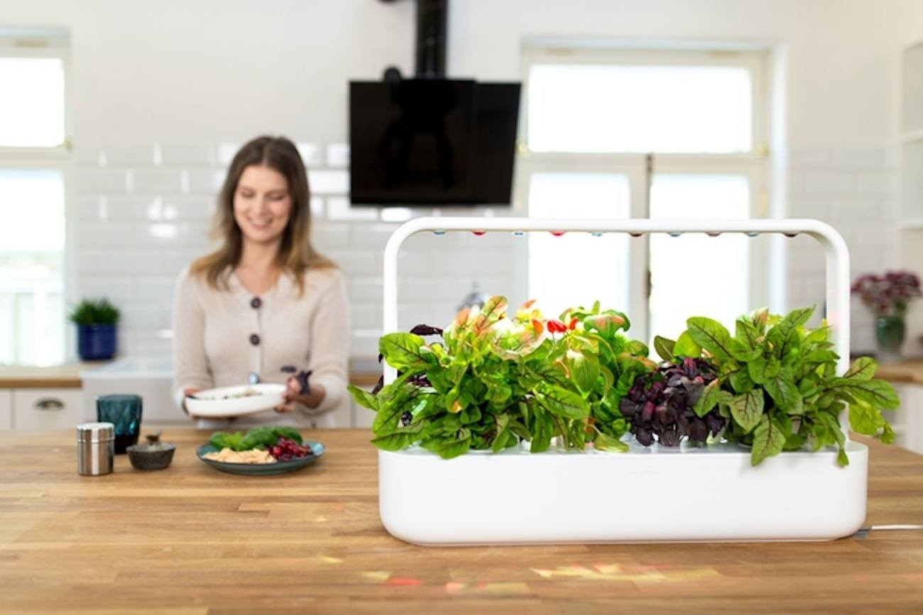 smart garden indoor garden gadget flow