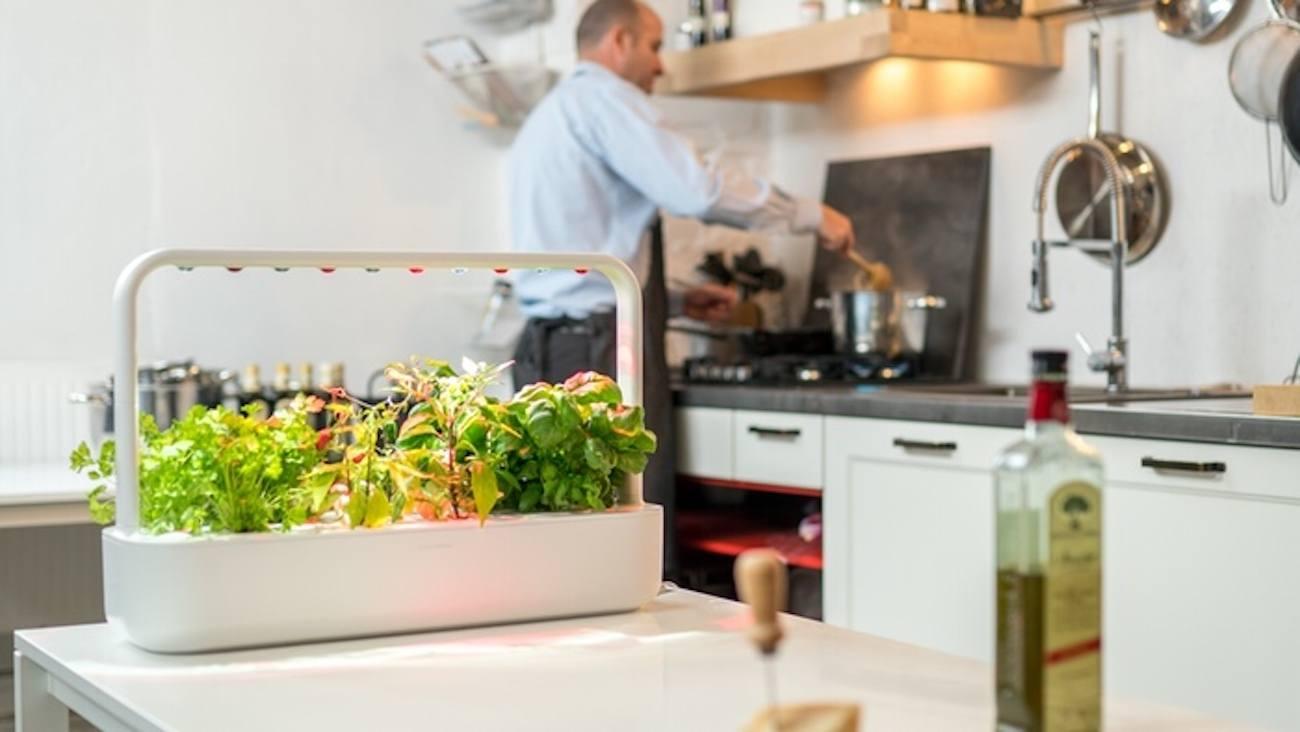 Smart Garden 9 – Indoor Garden