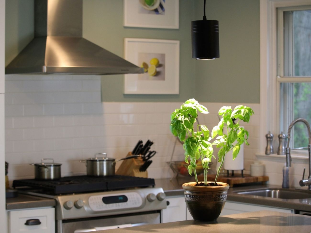 The Aspect – Reinventing the Grow Light for Interior Design