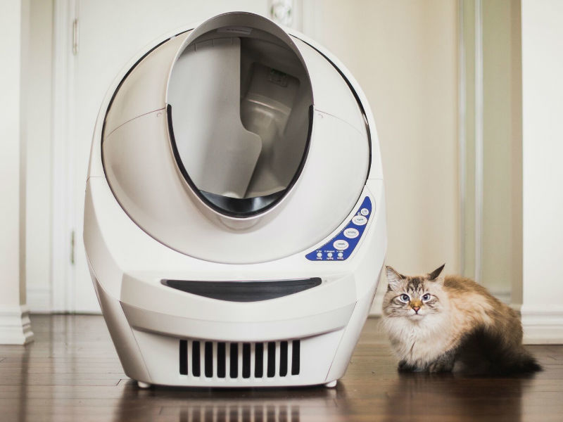 Holiday+Giveaway+From+Litter-Robot+%26%238211%3B+Participate+to+Win+a+4+Pack+Pet+Combo+NOW%21