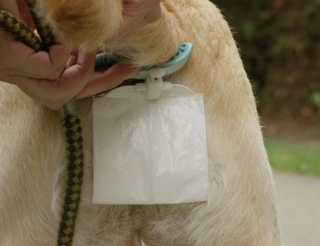 Piqapoo Hands-Free Dog Poop Collector