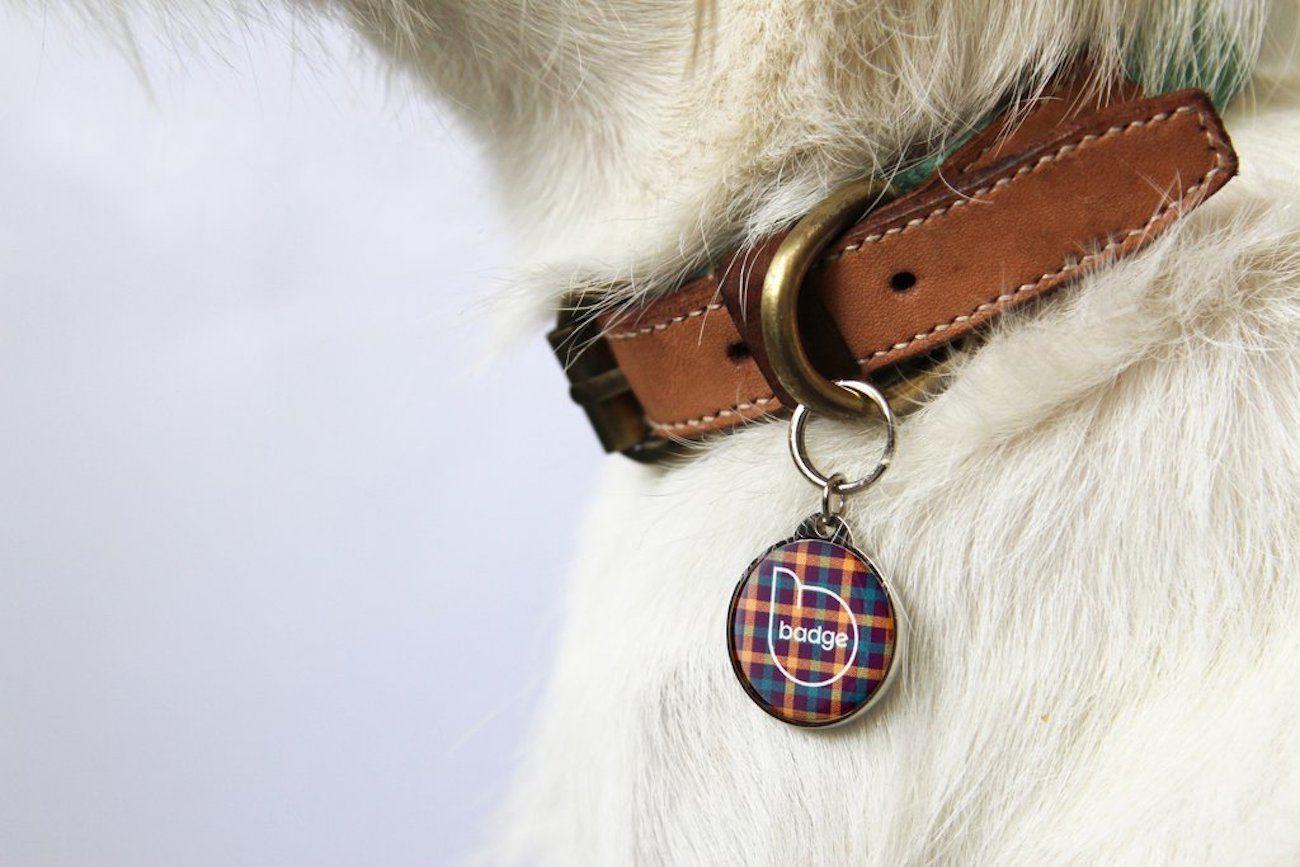 badge Smart Pet ID Tag