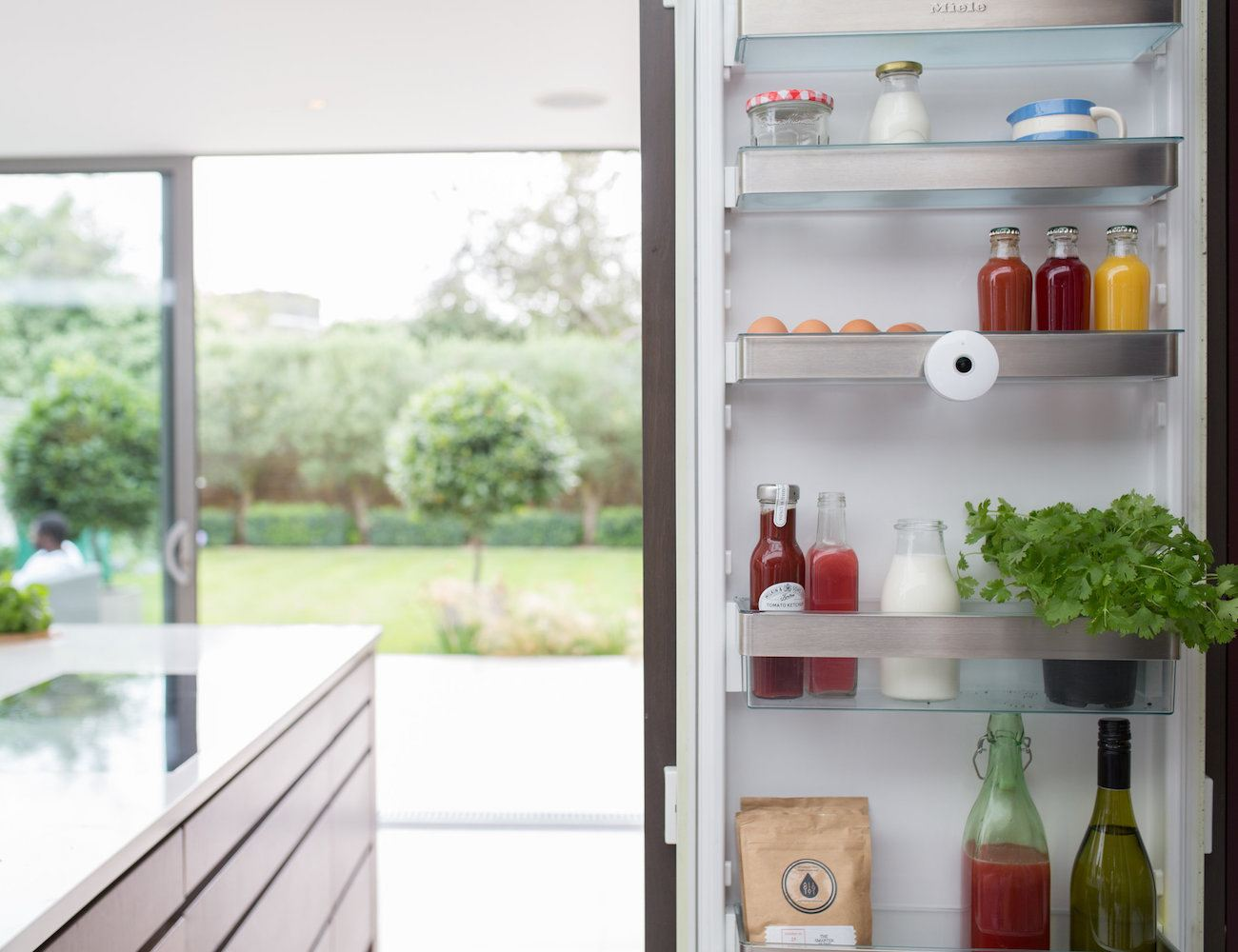 FridgeCam Smart Refrigerator Camera