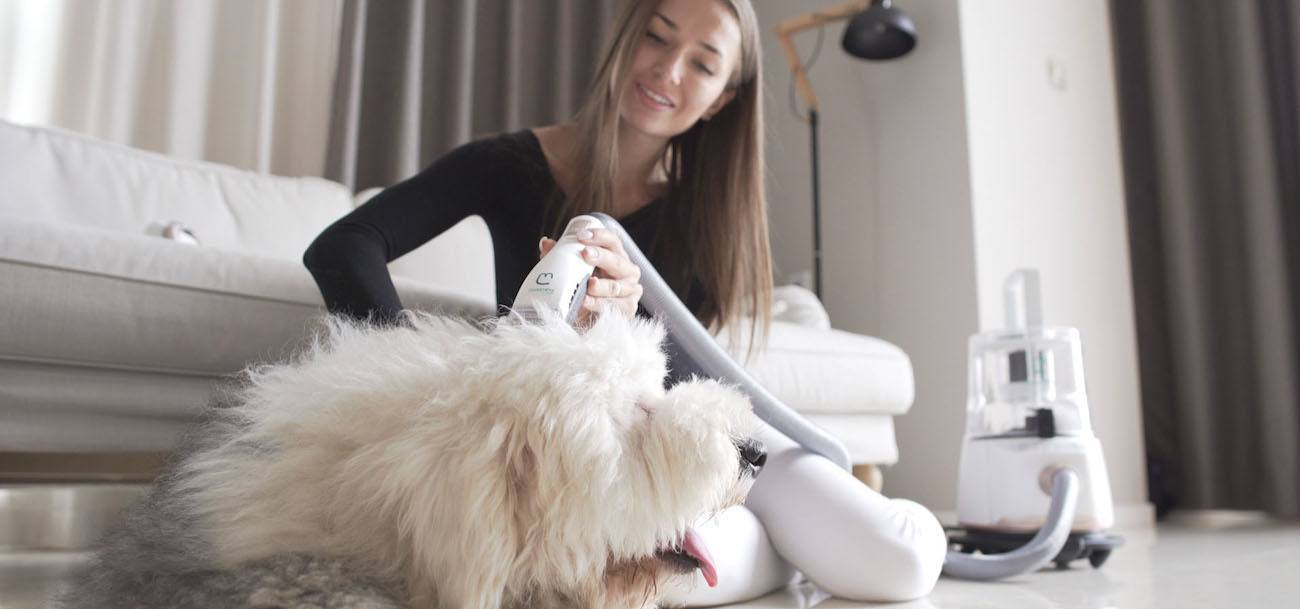 GroomPal Mess-Free Dog Grooming Device