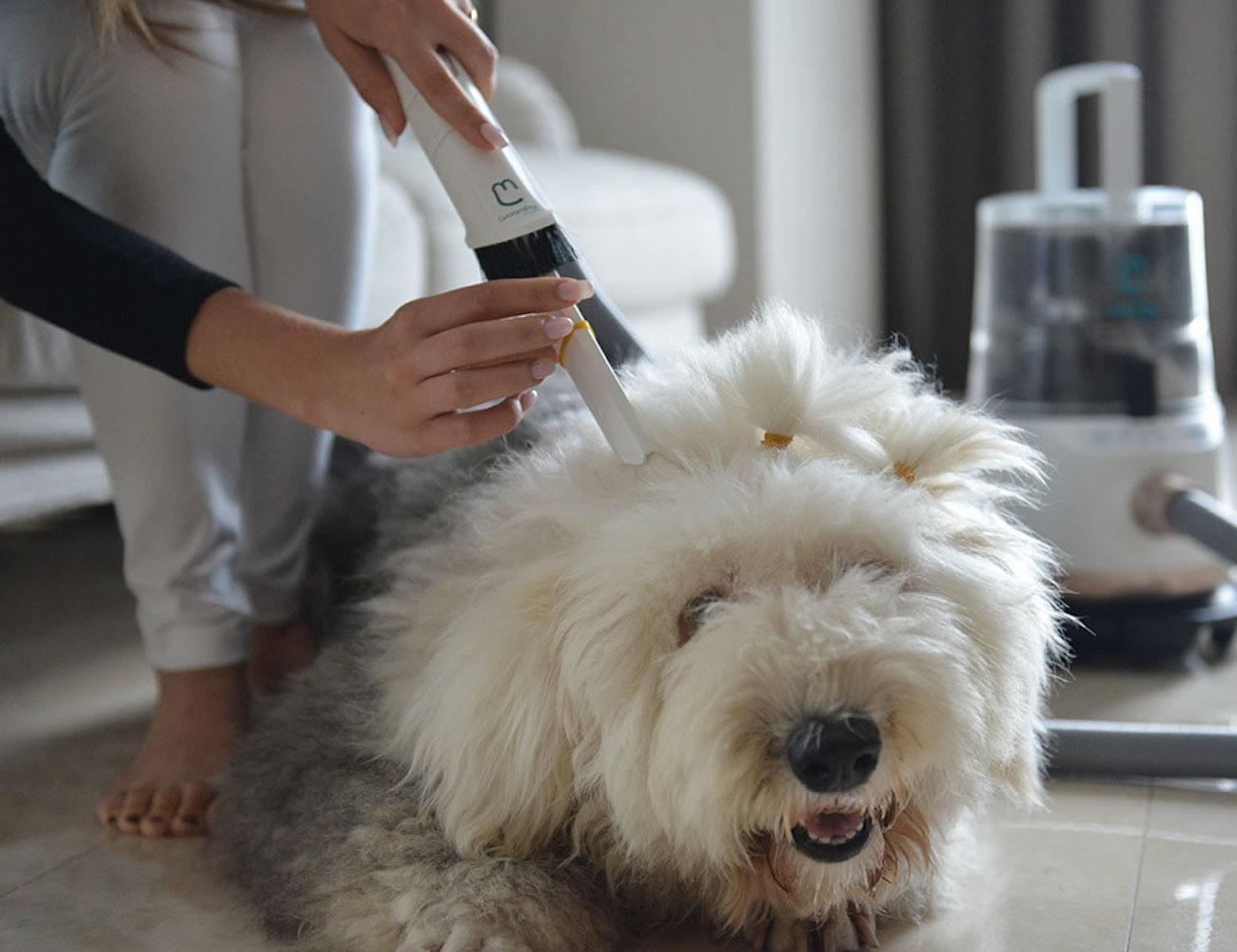 GroomPal Mess-Free Dog Grooming Device
