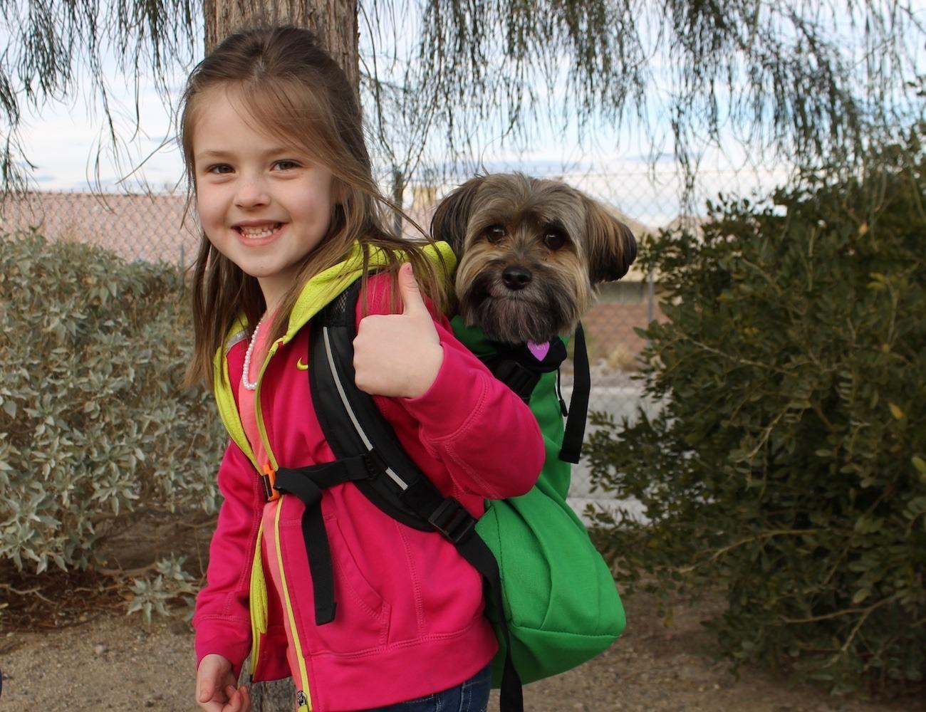 Dog+Carrier
