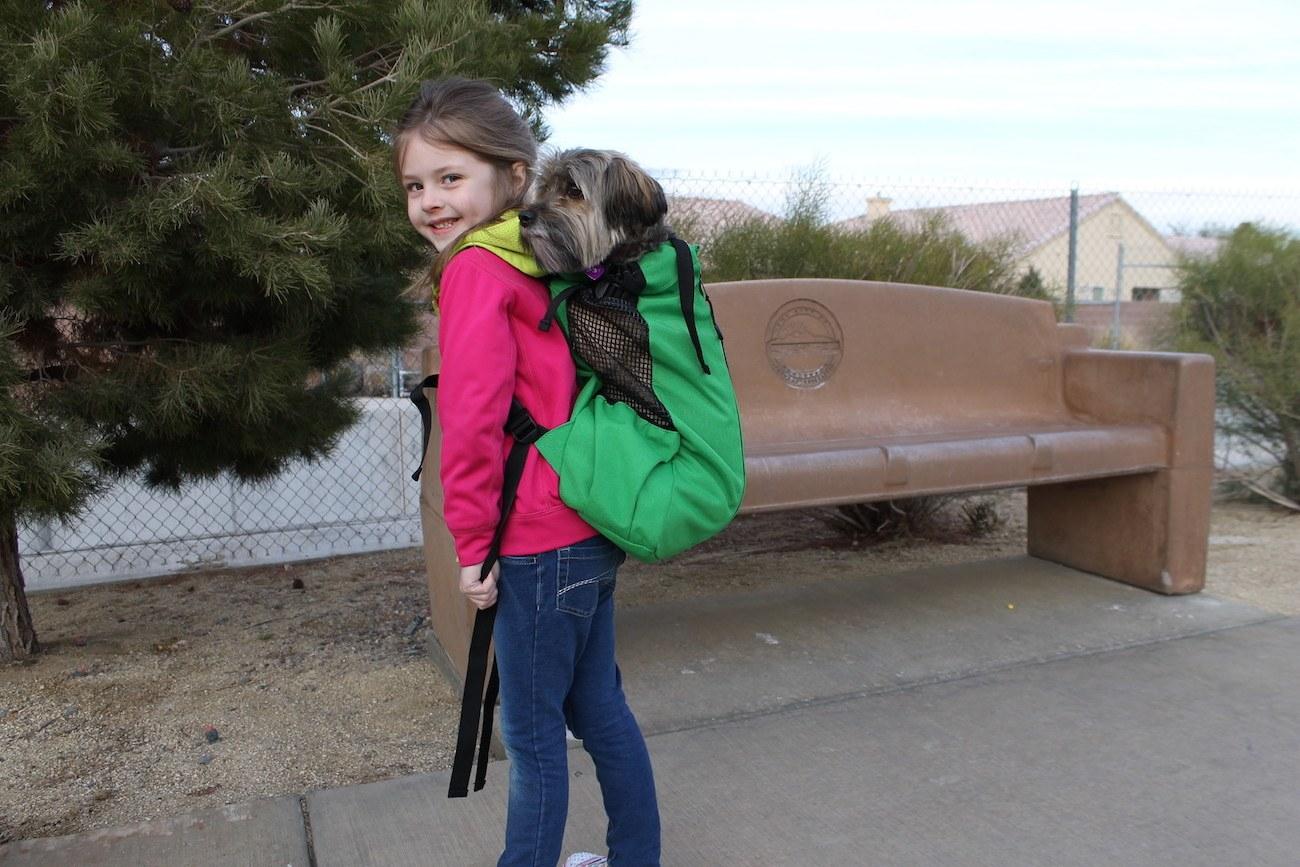 K9 Sports Sack AIR Dog Backpack