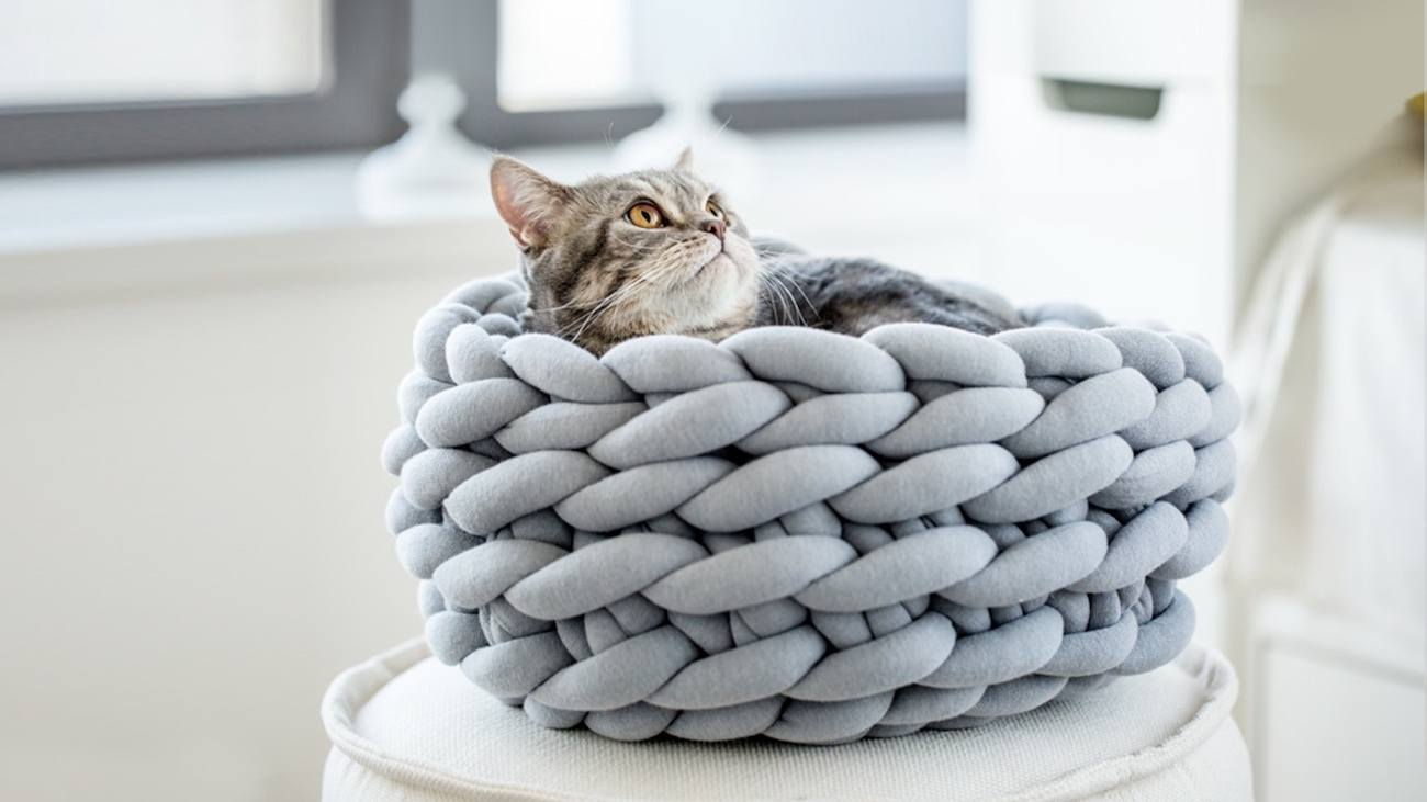 Ohhio Braid Knit Cat Bed