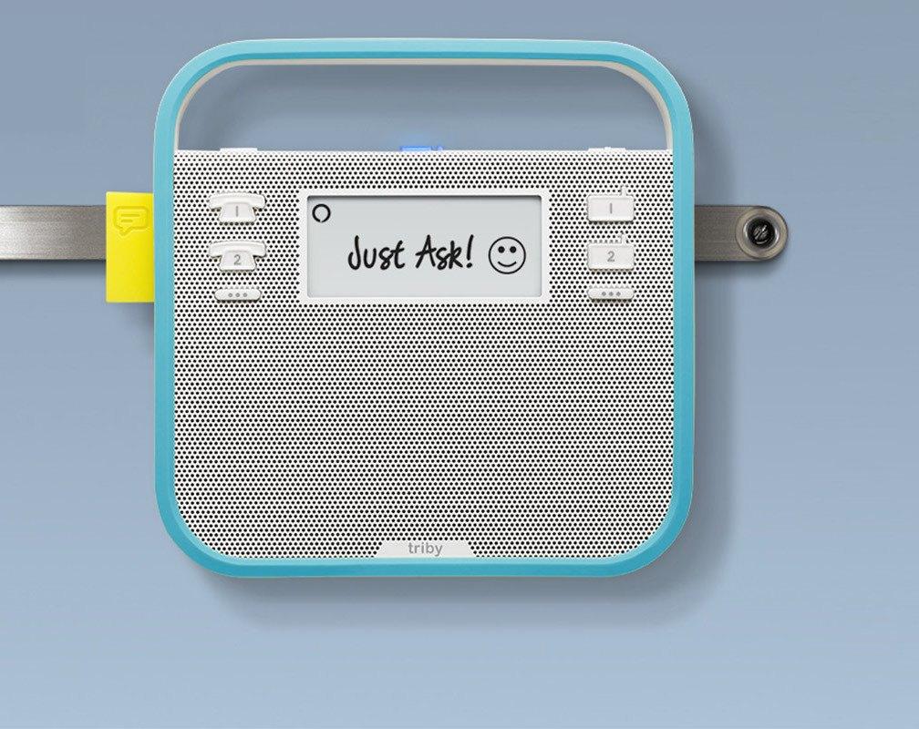 Triby Smart Portable Speaker