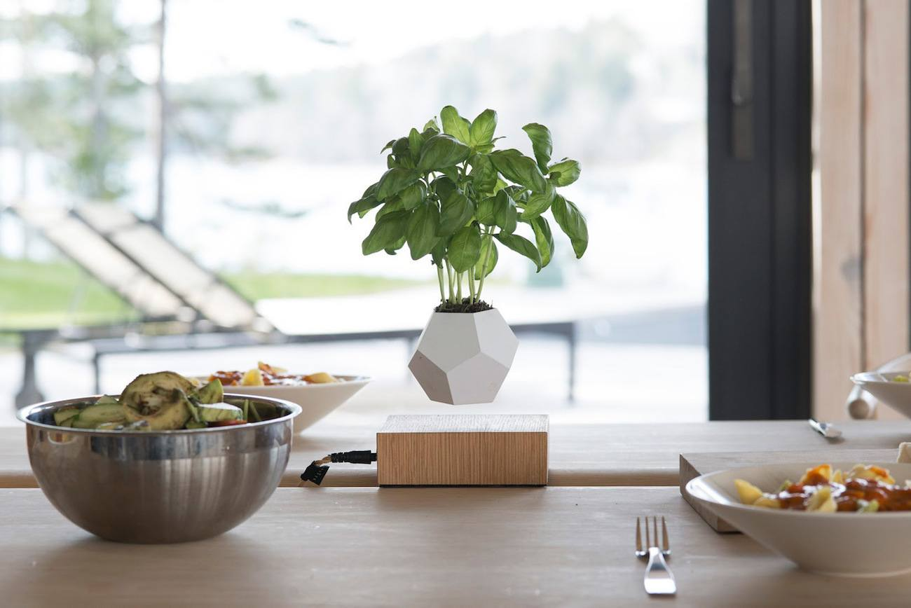 LYFE Floating Planter by Flyte » Gadget Flow