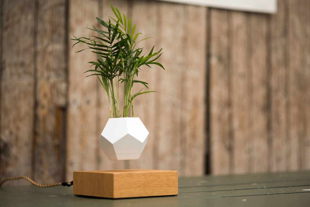 Lyfe Floating Planter By Flyte Review The Gadget Flow