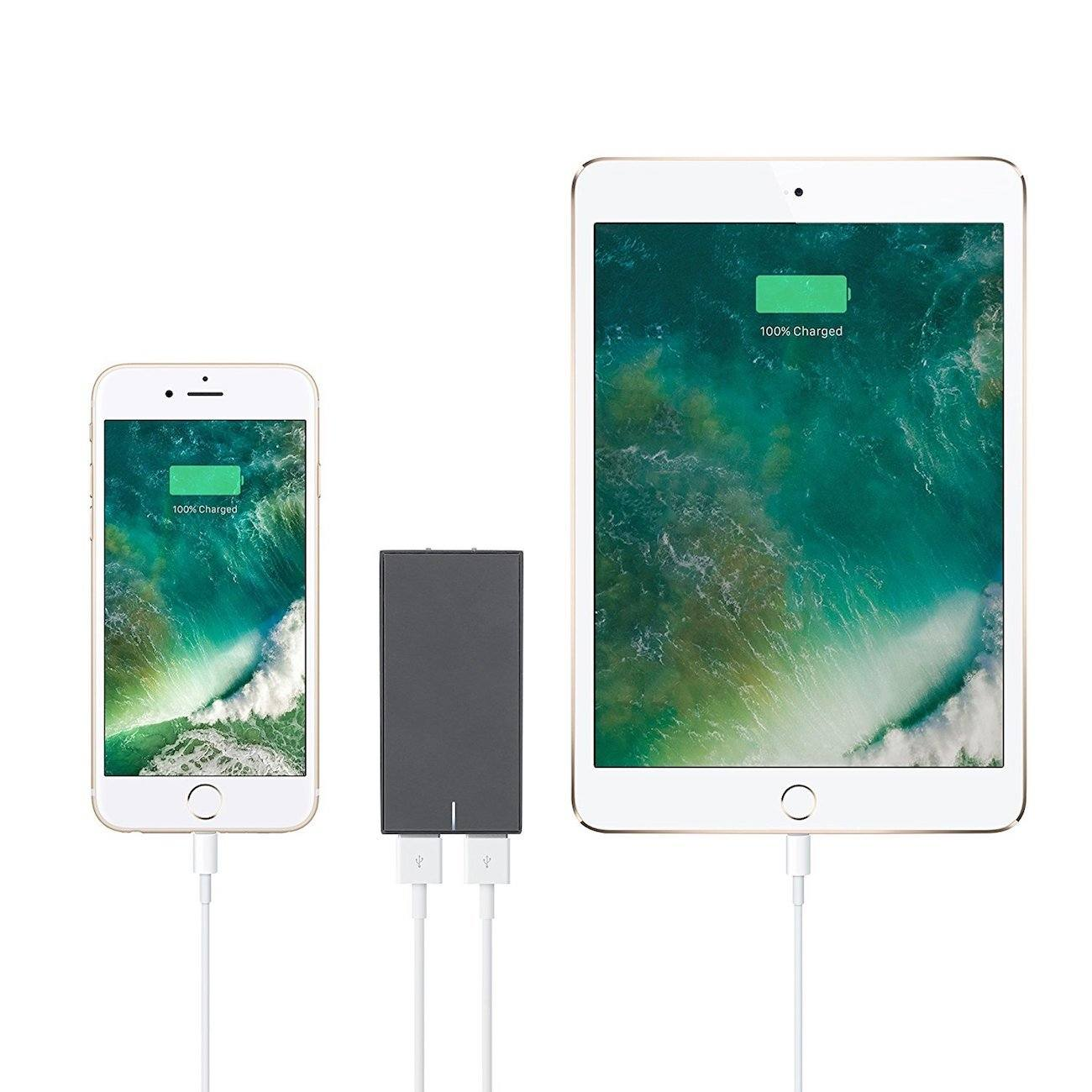 Native Union SMART Wall Charger