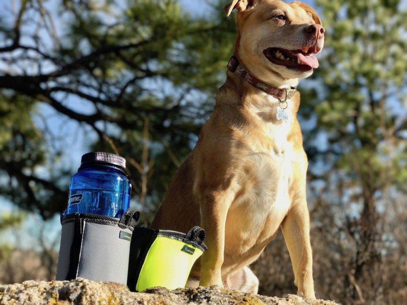 PaxBowl Portable Insulating Dog Bowl