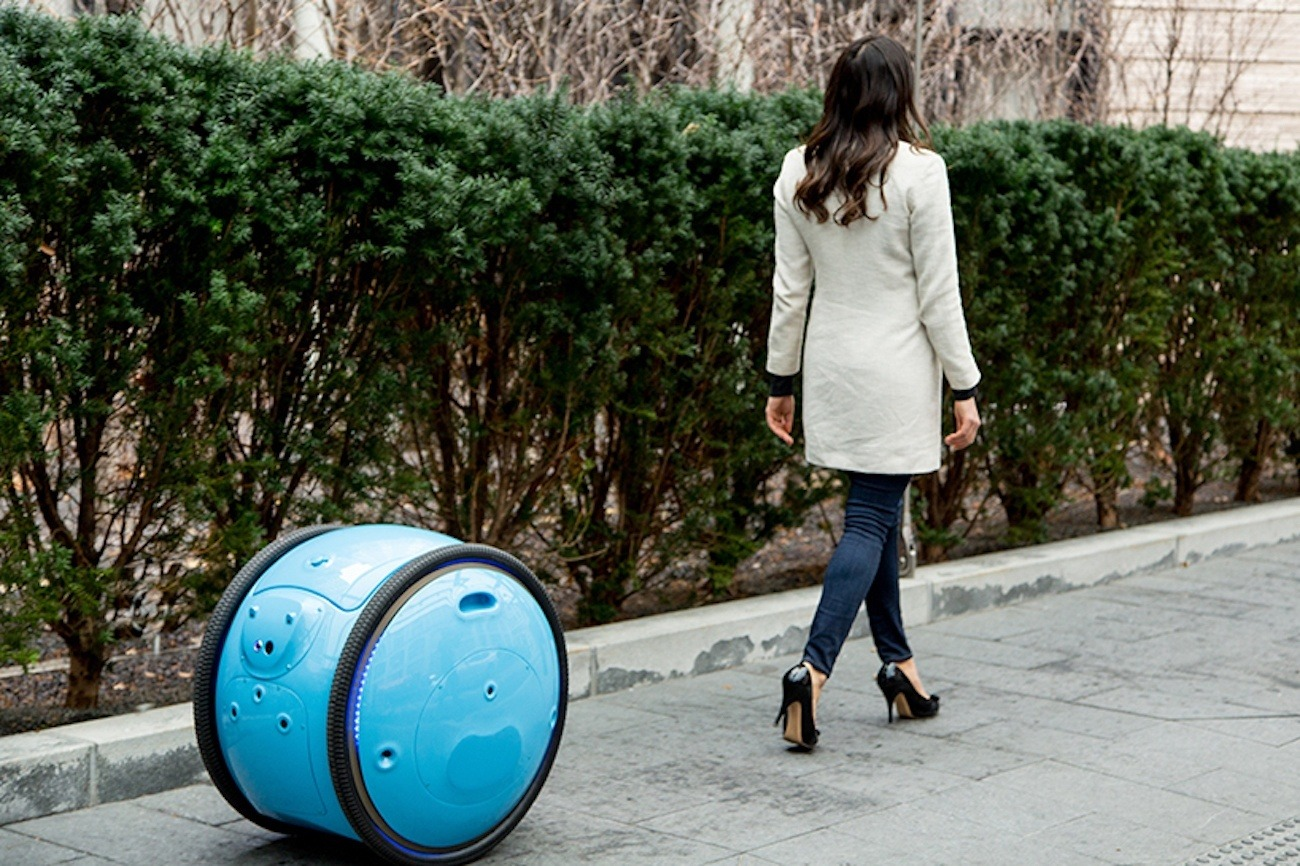 This Helpful Robot Porter Is the Ultimate Shopping Assistant