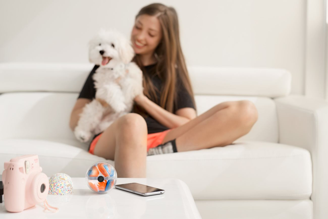 Pebby Robotic Pet Sitter
