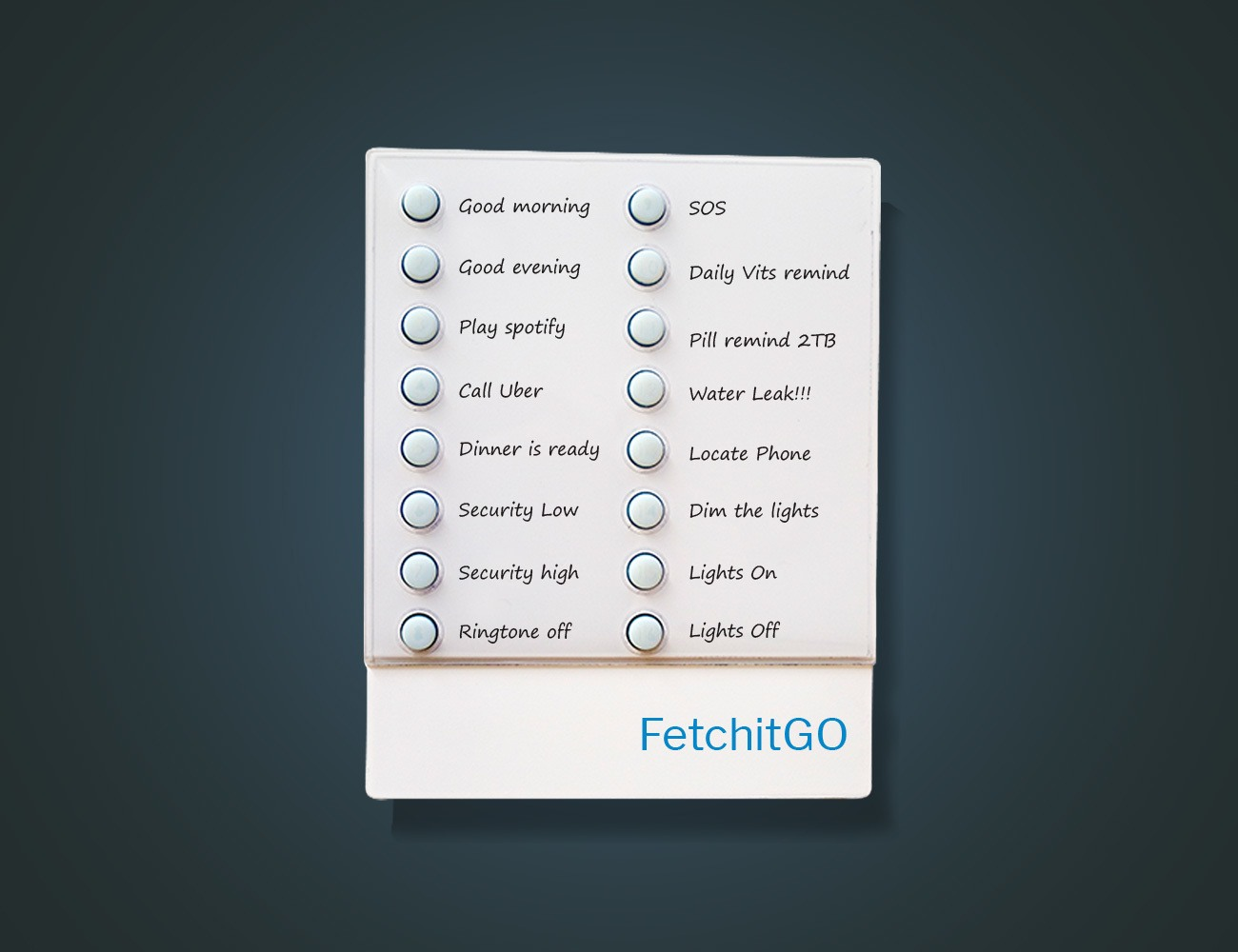 FetchitGO Smart IOT Controller