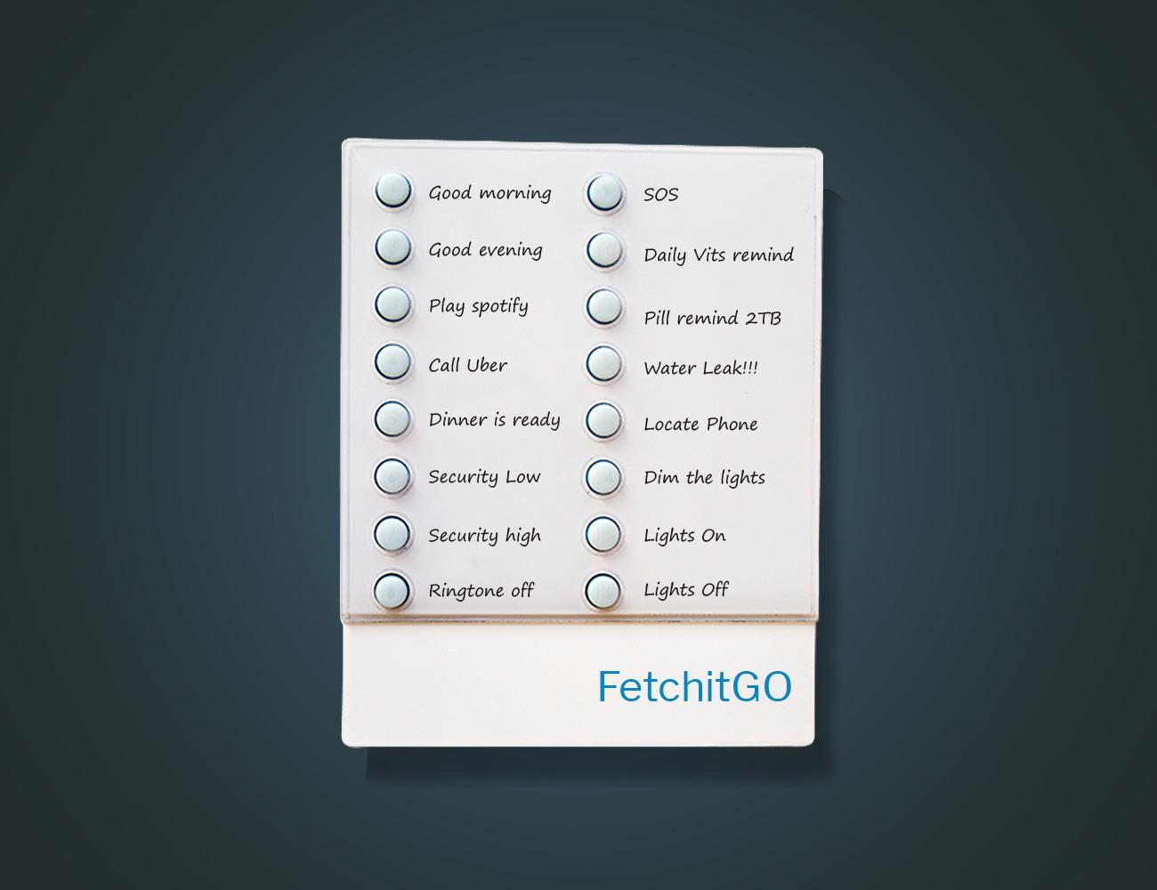 FetchitGO Smart IOT Controller