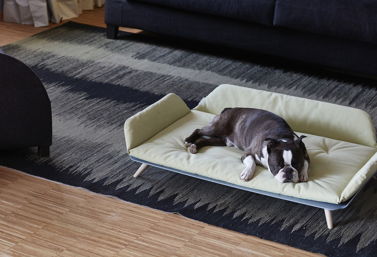 Letto dayBed Modern Dog Bed