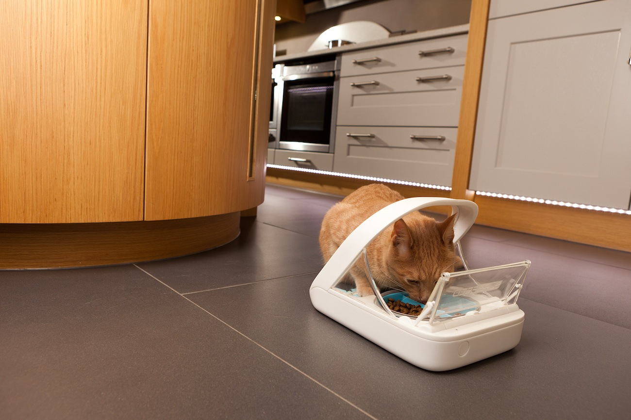 Surefeed Microchip Pet Feeder 187 Gadget Flow