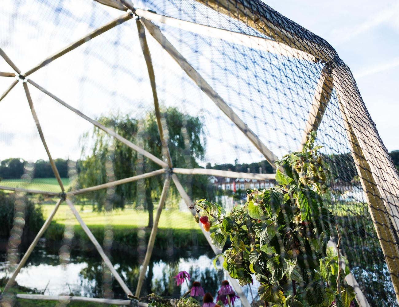 Hubs DIY Garden Dome Kit