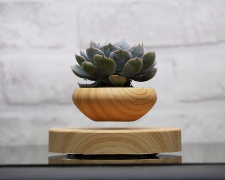 Levitating Indoor Plant Pot