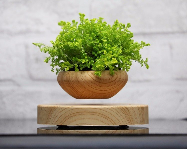 Levitating Indoor Plant Pot » Gadget Flow