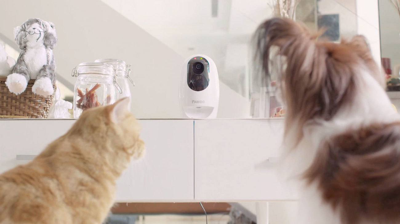Pawbo Life Pet Camera Treat Dispenser