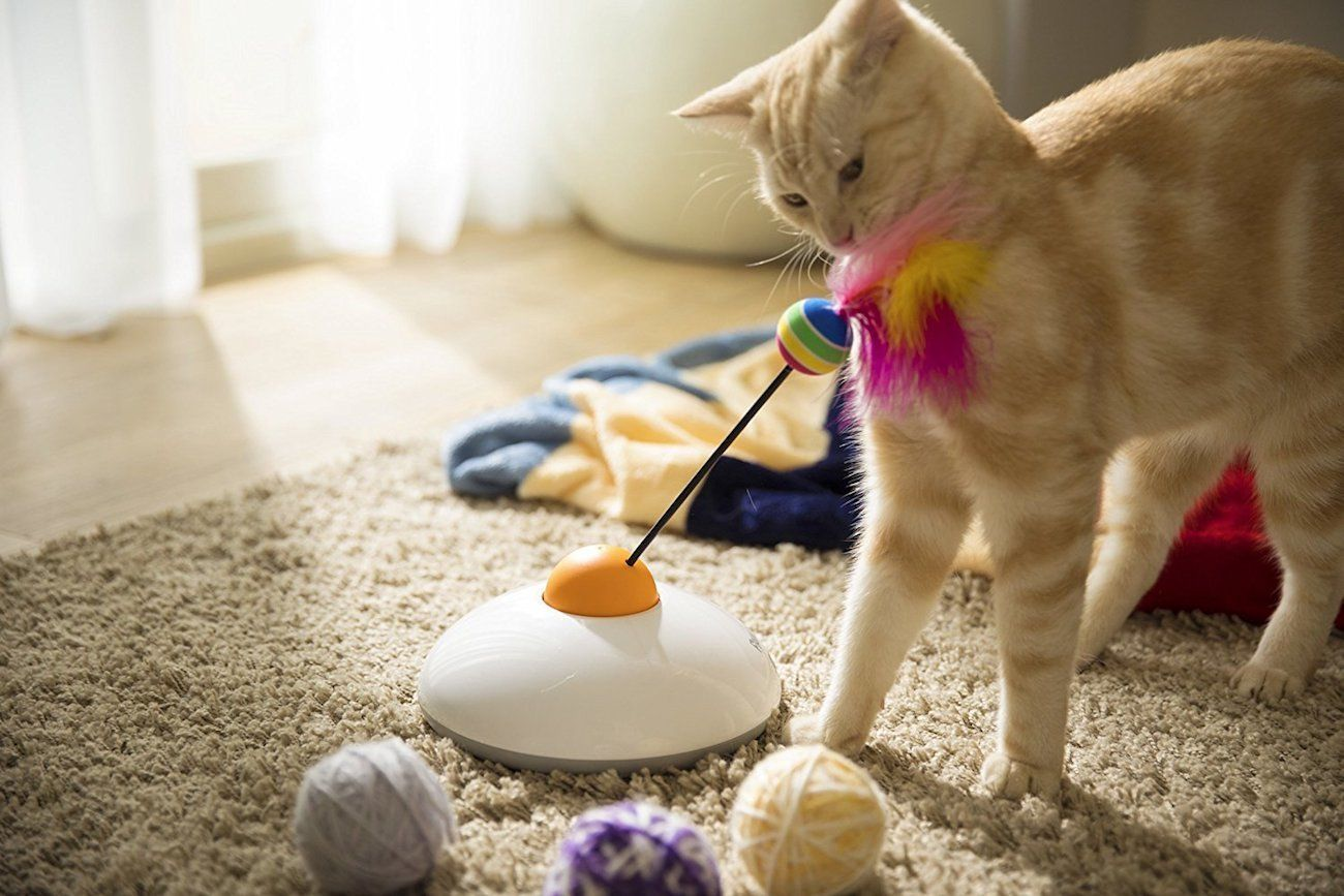 Pawbo Catch Remote Cat Toy