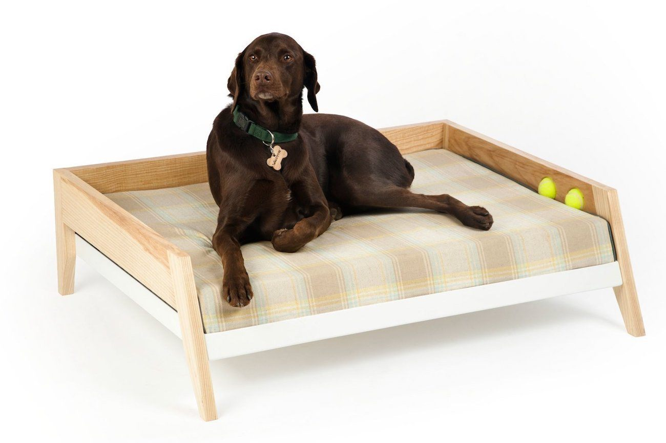 Winston Raised Dog Bed