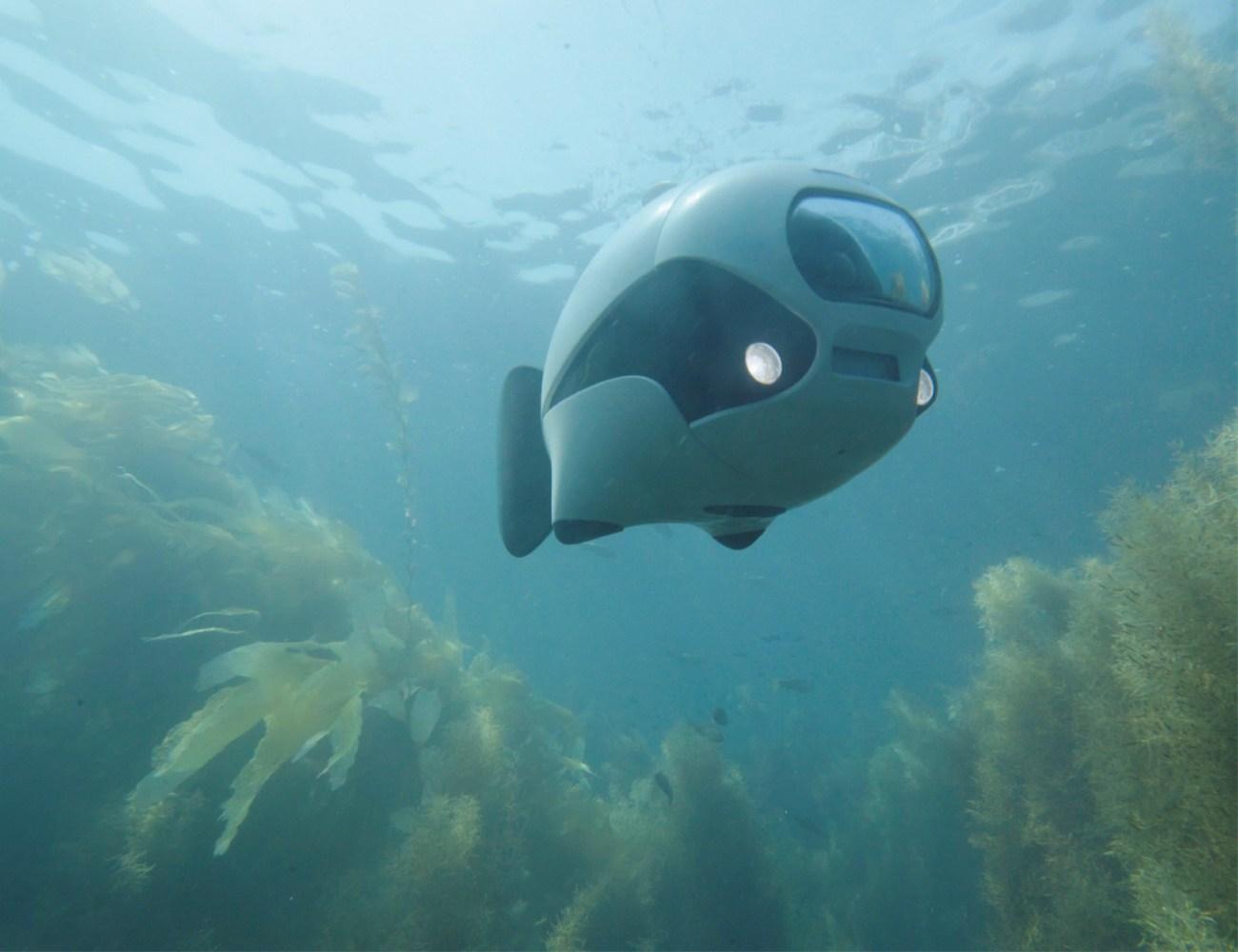 BIKI Underwater Wireless Fish Drone