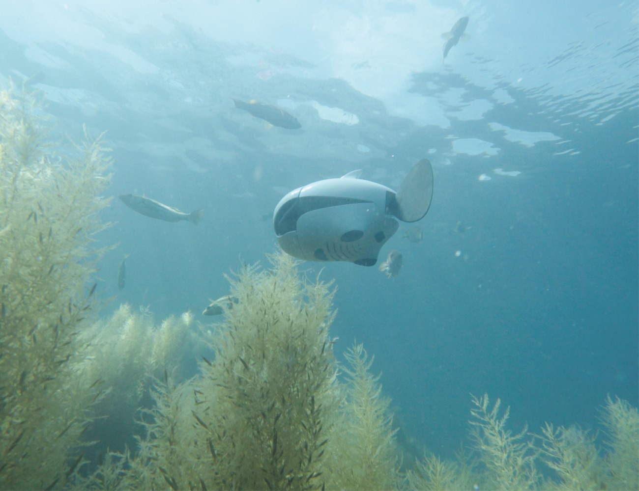 BIKI Underwater Wireless Fish Drone
