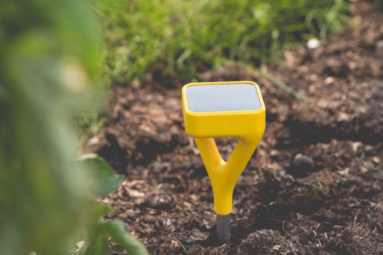 edyn wi fi garden sensor - Edyn Garden Sensor